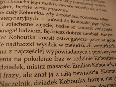 Fragment strony 41 książki Pilcha.